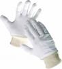 Rukavice CERVA TIT ražná bavlna pružná manžeta
